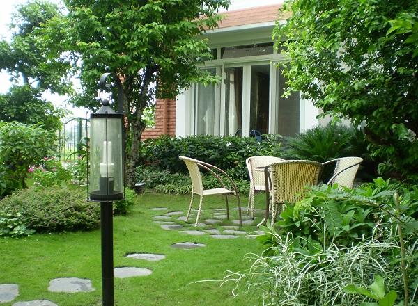 Những loại cây nên chọn lựa trồng trước khuôn viên nhà. Ảnh minh họa
